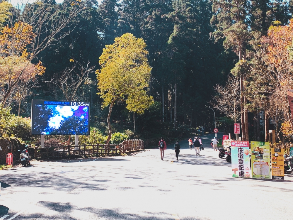 臺大實驗林-P6戶外LED電視牆-1